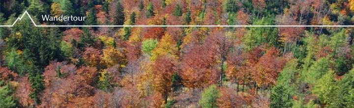 Herbst am Schneeberg (2076m): Nandlgrat und Kienthaler-Hütte