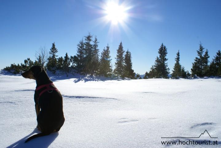 Auf der weißen Sonnenbank lässt es sich wunderbar entspannen.
