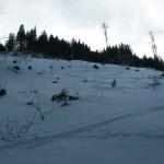 Offenes Gelände, schwerer Schnee und schwere Beine