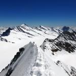Gipfelgrat vor den Fiescherhörnern